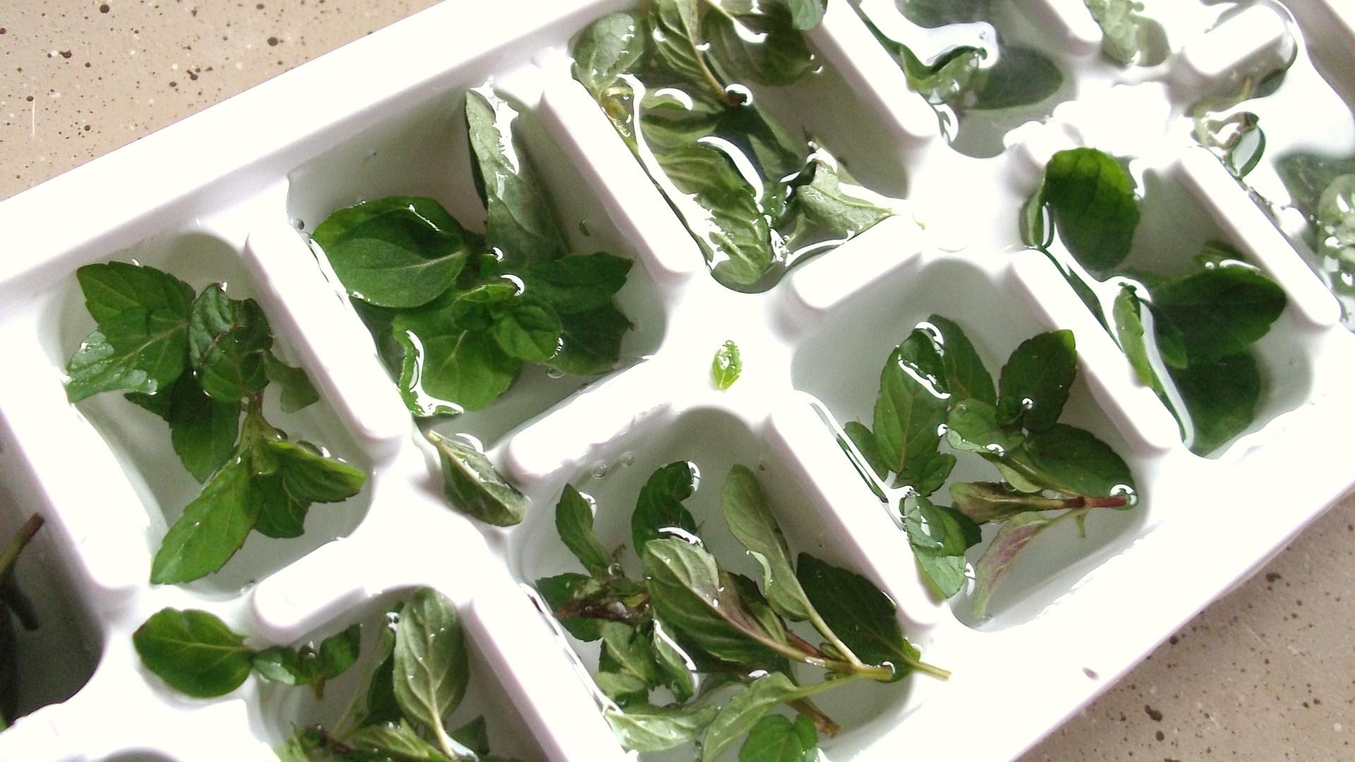 Five-Herb Ice Milk Recipes — Dishmaps